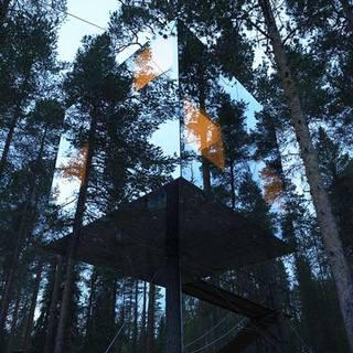 dzn_Tree-Hotel-by-Tham-and-Videgard-Arkitekter-1.jpg