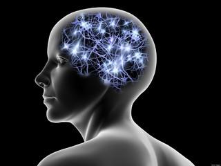 脳と宇宙.jpg